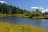 Williamson River Park