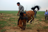 Mongolia - A land of beginning