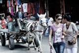 Donkey & cart coming through