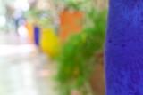 Jardin Majorelle abstract