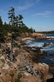Acadia National Park coastline