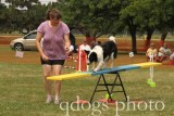 Dog Agility Advanced Standard 4