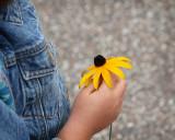 Flower for the teacher