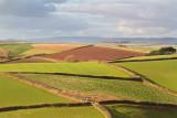 Week 09 - Distant Dartmoor.jpg