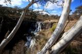 OT07 Guy Fawkes NP River Ebor FallsS.tif