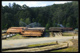 Powelltown Timber Mill