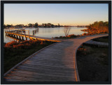 Raymond Island Boardwalk