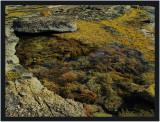 Rock pool on Eagles Nest rock platform