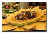Antwerp chocolates
