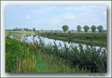 wandeling langs de Maas in Maaseik (gele wandeling)