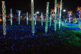 Night Gardens