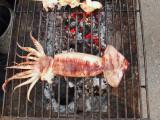 Barbequed Squid