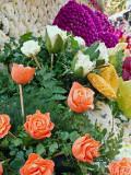 Carrot Roses