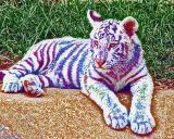 White Tiger by a Daltonic Painter
