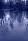 Reflection in b&w