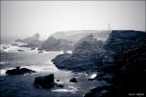 Canon_EOS_600D_20110720_142011_IMG_2929.jpg