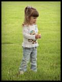 Dandelion Picking