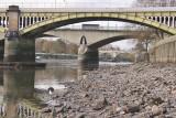 Super low tide under the bridge.