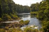 Arthur River at Sumac