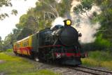 Don River Railway Steam Train