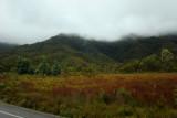 Lyell Highway