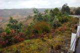 Queenstown Hills