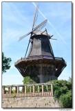 windmill-6967-sm.JPG