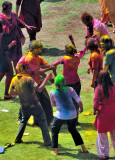 Holi on the grass...