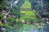Goa air