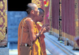 Buddhist Monks preying