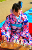 Young Koto Player