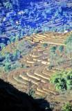 The Slopes o fthe Himalayas