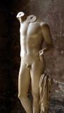 Classical Boy's Torso