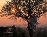 Suburban Sunset 2