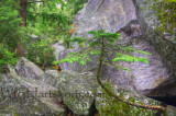 Granite Grandeur