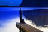 Shades of Moonlight