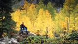 Autumn with Hart