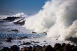 Breakwater Tsunami Rogue