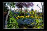 2011 - Vancouver Island - Victoria - Butchart Gardens
