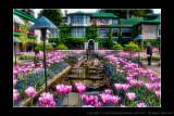 2011 - Vancouver Island - Victoria - Butchart Gardens - Ken
