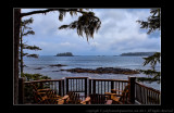 2011 - Vancouver Island - Pacific Rim National Park - Middle Beach Lodge