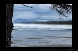 2011 - Vancouver Island - Pacific Rim National Park - Wickaninnish Beach