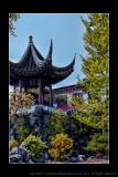 2011 - Vancouver - Dr. Sun Yat-Sen Classical Chinese Garden