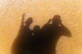 Sea Shadows