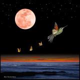 hummingbirdBUTTERFLY COLLAGE.jpg