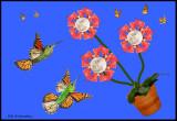 moon wing flower collage.jpg