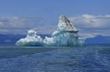 Icebergs from the LeConte Glacier