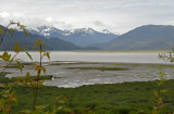 Other Tongass National Forest Views