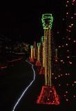 Garvan Gardens Christmas Lights
