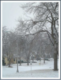 February 21 - Snow